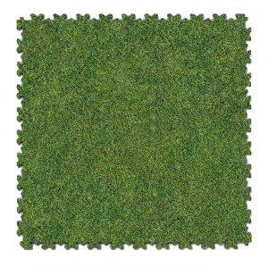 Stampa Grass